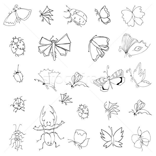 коллекция стороны рисунок насекомые Cute набор Сток-фото © frescomovie