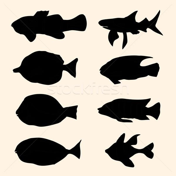 fish set. Icons.  Stock photo © frescomovie