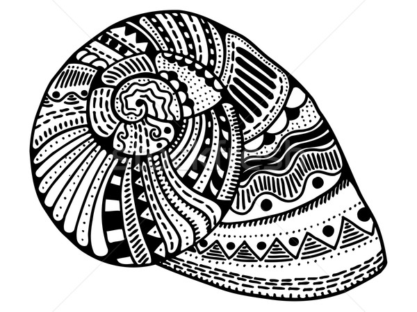 Zentangle stylized shell Stock photo © frescomovie