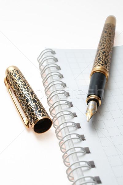 üzlet szervező notebook tervező arany toll Stock fotó © frescomovie