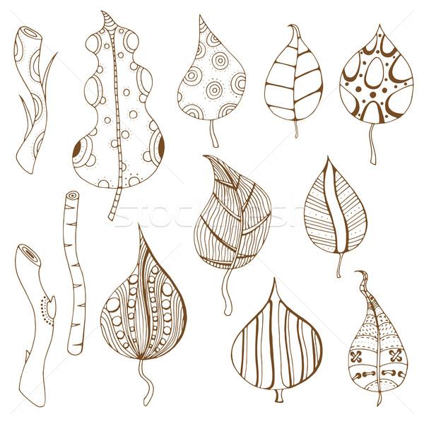 Ramo folhas conjunto monocromático rabisco Foto stock © frescomovie