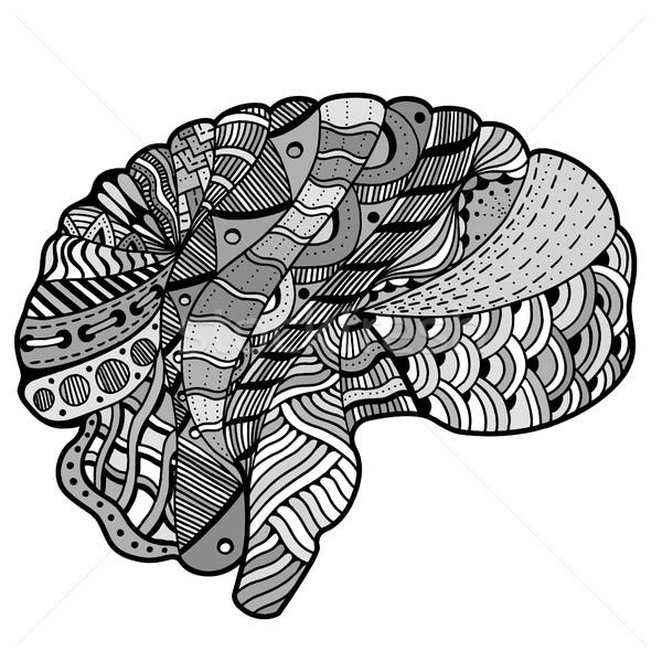 Stock photo: Sketchy Human Brain
