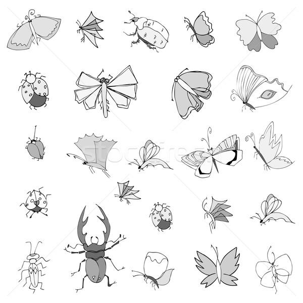 Coleção mão desenho insetos bonitinho conjunto Foto stock © frescomovie