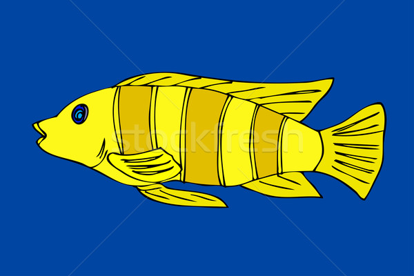 Tropical fish Stock photo © frescomovie