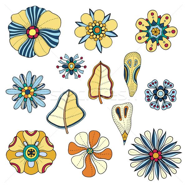 çiçek dizayn elemanları karalamalar çiçekler sanat Stok fotoğraf © frescomovie