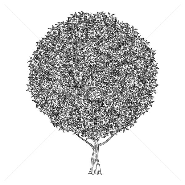 Сток-фото: дерево · листьев · цветы · вектора · книжка-раскраска · страница