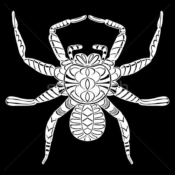Gestileerde spin dieren zwart wit doodle Stockfoto © frescomovie