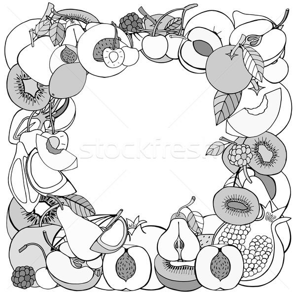 Vruchten bes monochroom vector frame sjabloon Stockfoto © frescomovie