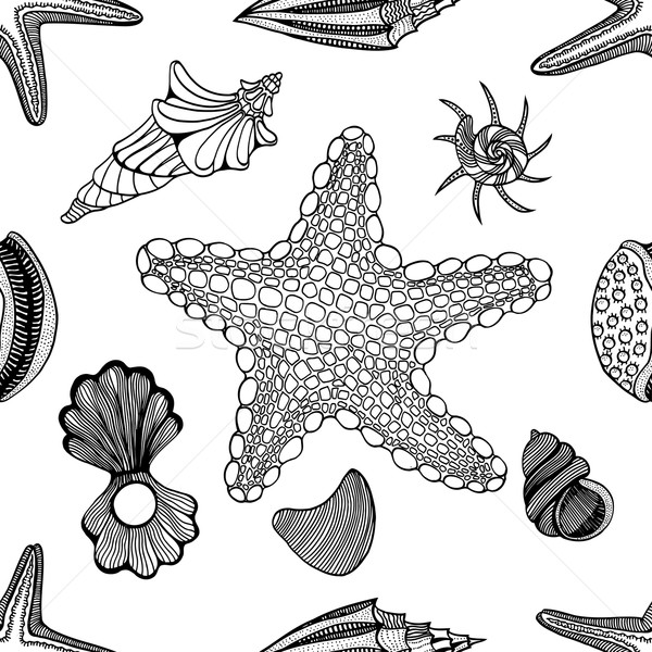 Conchiglie starfish pattern abstract natura Foto d'archivio © frescomovie
