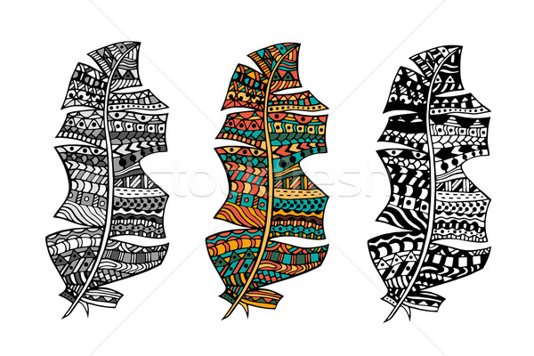 Zentangle stylized feathers Stock photo © frescomovie