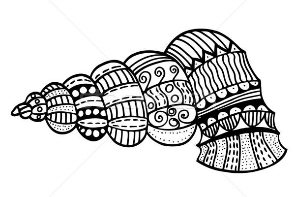 ストックフォト: 定型化された · シェル · 手描き · 水生の · いたずら書き · スケッチ