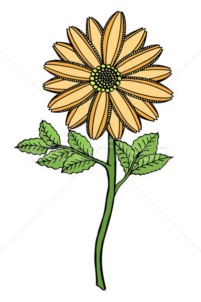 çiçek renkli kroki vektör yalıtılmış Stok fotoğraf © frescomovie