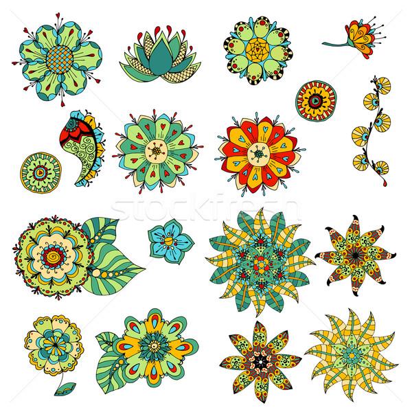 Vázlatos virágok szett színes firka illusztráció Stock fotó © frescomovie
