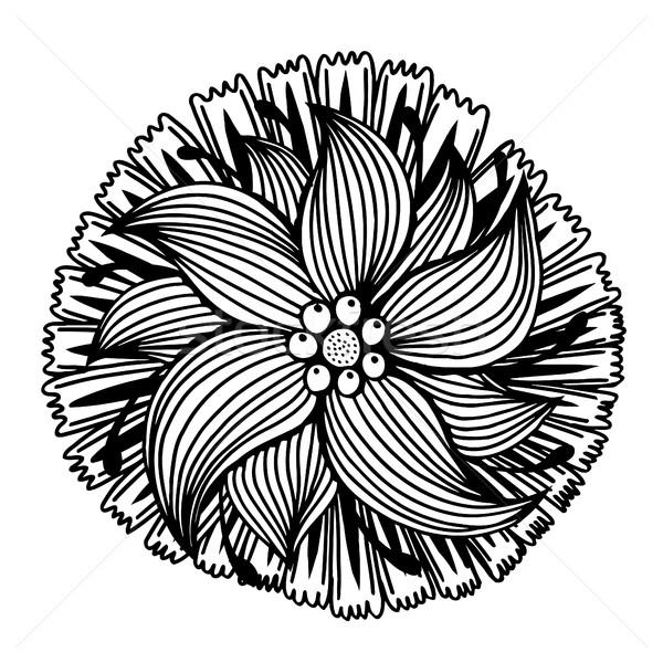 Kézzel rajzolt firka virág izolált fehér absztrakt Stock fotó © frescomovie