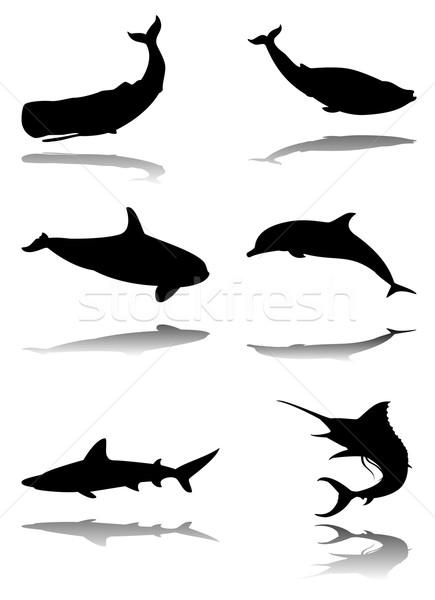 Set of marine animals Stock photo © fresh_7266481