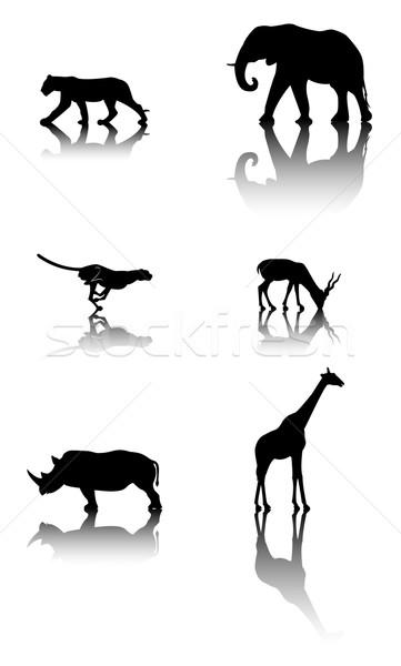 Conjunto animais selvagens animais seis silhuetas reflexo Foto stock © fresh_7266481