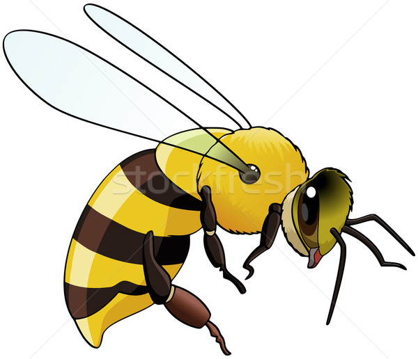 蜂 実例 飛行 孤立した 白 ストックフォト © fresh_7266481