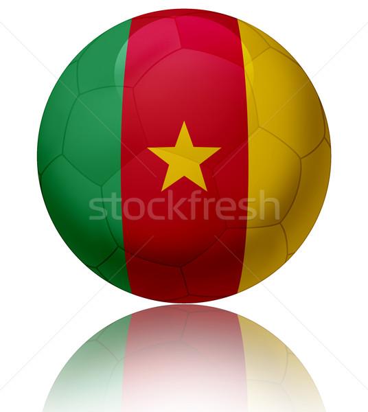 Камерун флаг мяча текстуры футбольным мячом Сток-фото © fresh_7266481