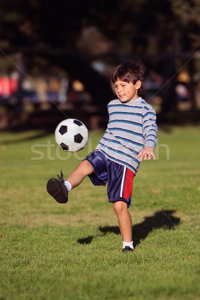 Ballon parc espace de copie football Photo stock © Freshdmedia