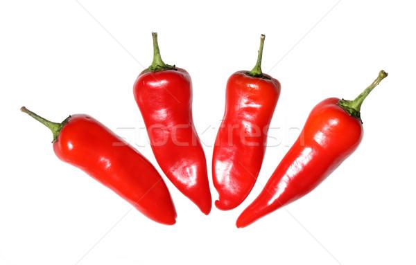 Négy piros forró chilipaprika izolált fehér Stock fotó © Freshdmedia