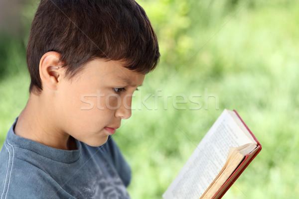 Fiatal srác olvas könyv kívül természetes zöld Stock fotó © Freshdmedia