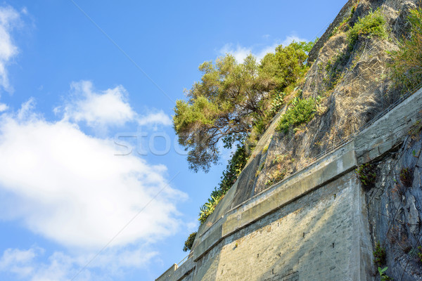 View from bottom to brick wall, mountains trees and blue sky Stock photo © frimufilms
