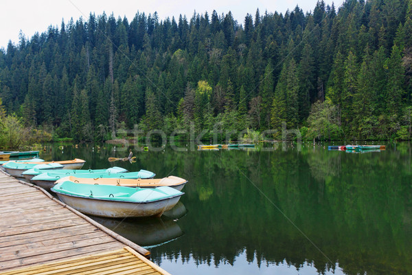 Barcos relaxante lago Romênia histórico Foto stock © frimufilms