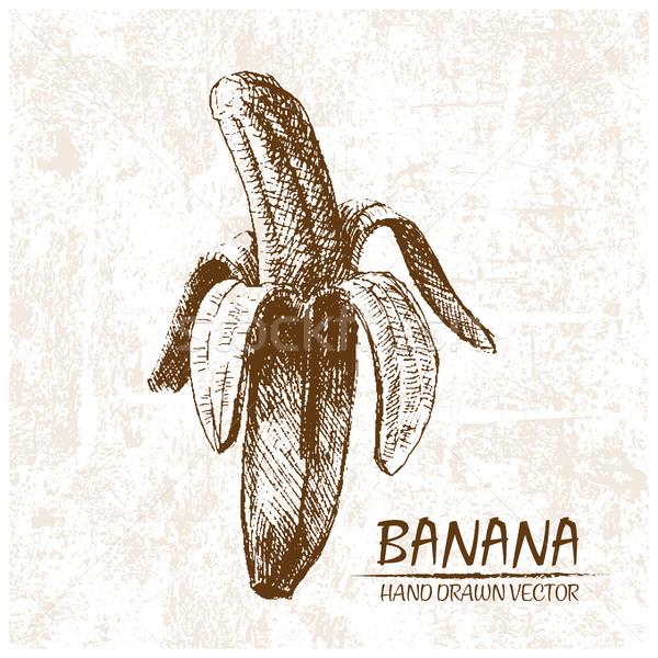 Digital vetor detalhado banana retro Foto stock © frimufilms