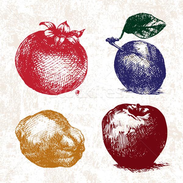 ストックフォト: デジタル · ベクトル · 詳しい · 色 · フルーツ · 手描き