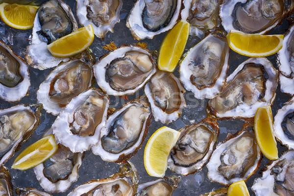 Oysters and lemon Stock photo © frimufilms