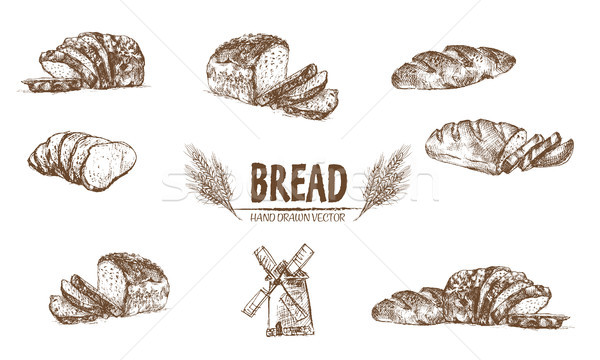 Digital vector detailed line art baked bread Stock photo © frimufilms