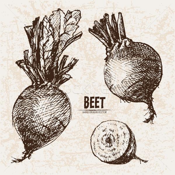 Foto d'archivio: Digitale · vettore · dettagliato · line · arte · vegetali