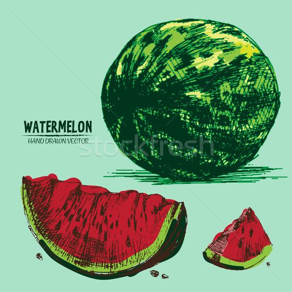 Digitális vektor részletes szín görögdinnye kéz Stock fotó © frimufilms