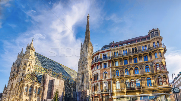 St stephen cathedral on stephansplatz in vienna Stock photo © frimufilms