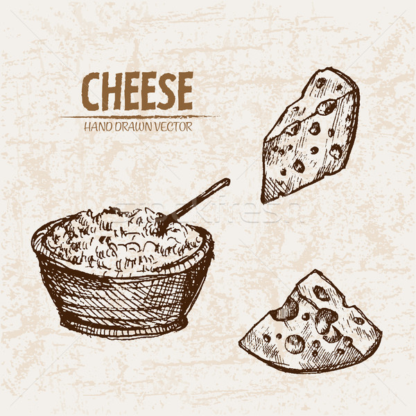 Digital vector detailed line art grated cheese Stock photo © frimufilms