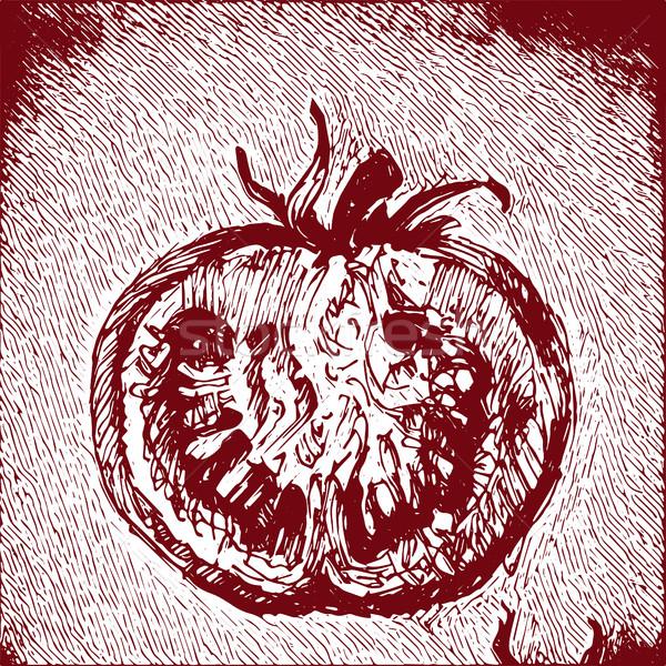 Digital vetor detalhado tomates tomates Foto stock © frimufilms