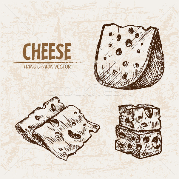 Digital vector detailed line art sliced cheese Stock photo © frimufilms