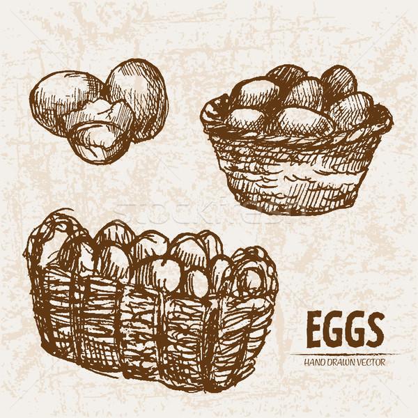 Digitale vettore dettagliato line arte uova Foto d'archivio © frimufilms