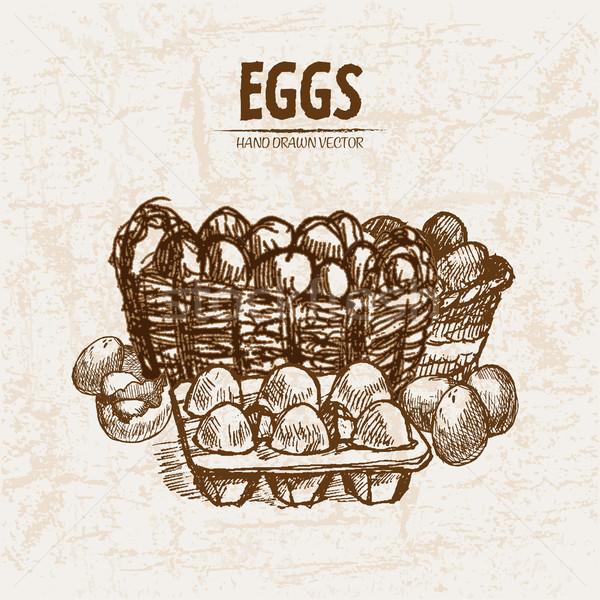 Digital vetor detalhado linha arte ovos Foto stock © frimufilms