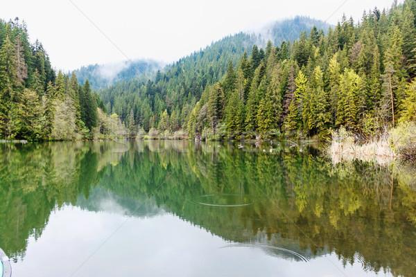 Ahşap rahatlatıcı göl Romanya dağlar Stok fotoğraf © frimufilms