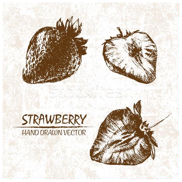Digitális vektor részletes eper kézzel rajzolt retro Stock fotó © frimufilms