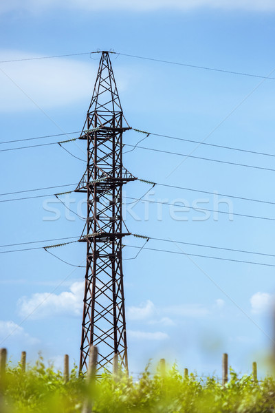 High tension power line electrical wire Stock photo © frimufilms