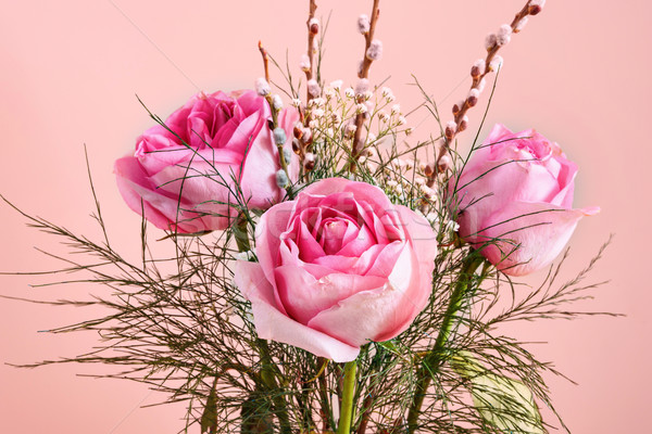 Pink blooming rose bouquete Stock photo © frimufilms