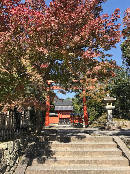 Daylight view to red gate entering in a japanese temple Stock photo © frimufilms
