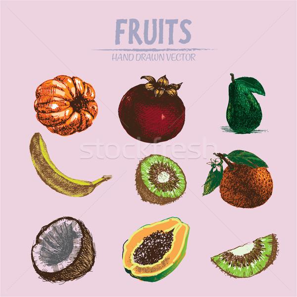 Foto stock: Digital · vetor · detalhado · fruto · cor