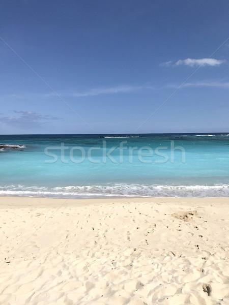 Mooie daglicht Blauw zee strand Stockfoto © frimufilms