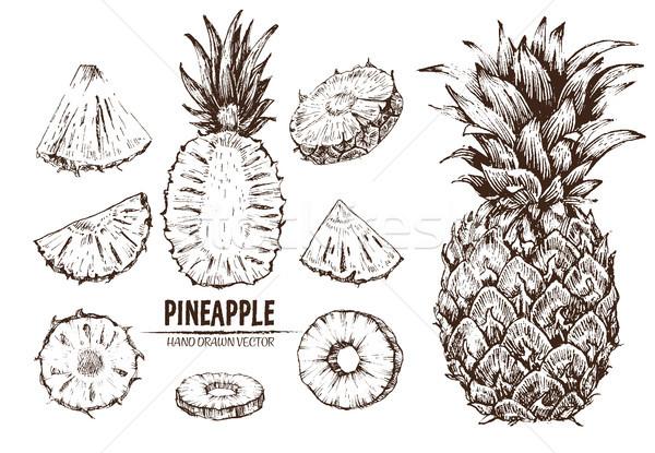 Digitális vektor részletes vonal művészet ananász Stock fotó © frimufilms