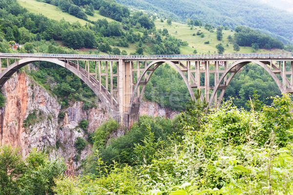 Tara bridge in mountains near Budva Stock photo © frimufilms