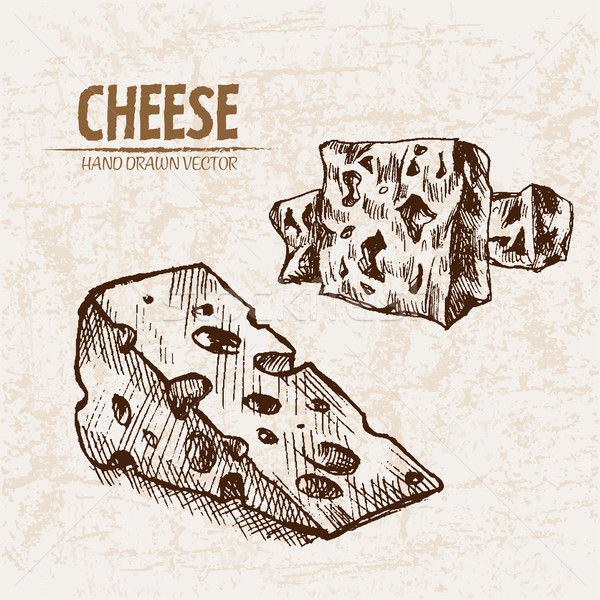 Digital vector detailed line art cheese slices Stock photo © frimufilms
