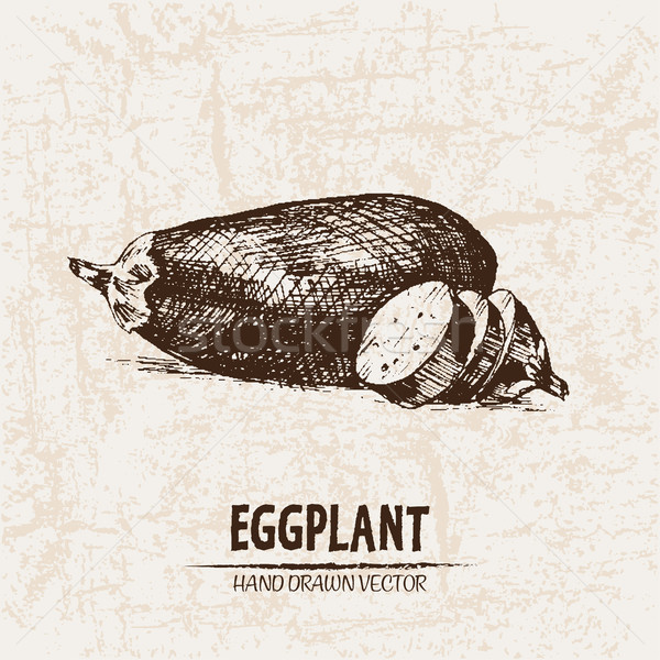 Stock photo: Digital vector detailed line art eggplant